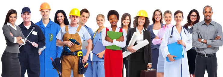 professioni richieste 2015