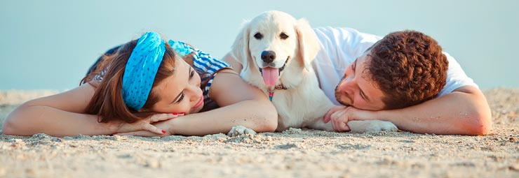 alberghi per vacanze con animali