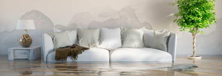 risanare umidità pareti
