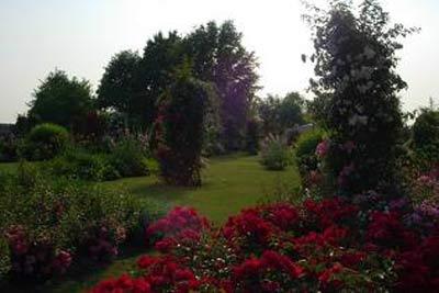 Pozzi Decorativi Da Giardino : Pozzi ernesto grandi vivai s s vivai piante e fiori biella