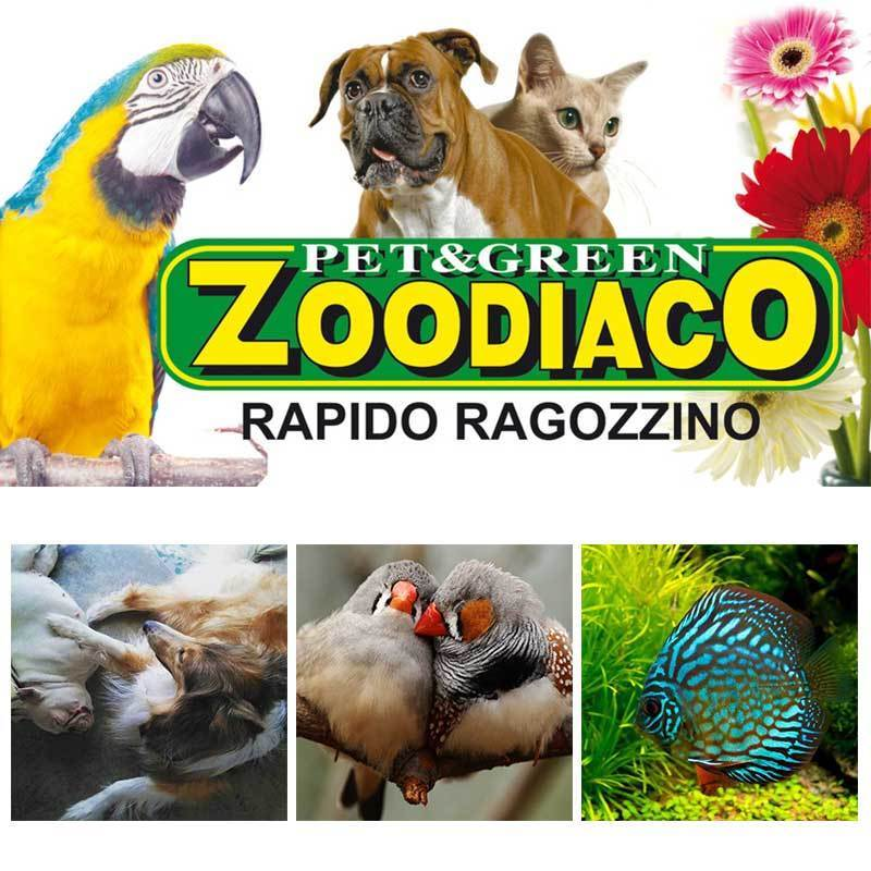 Pet e Green Zoodiaco