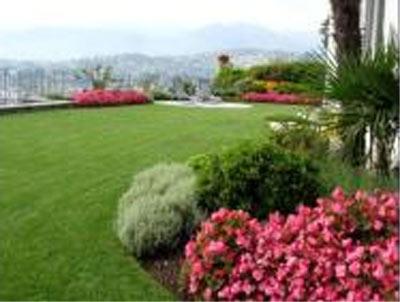 Vivaio Forestale Abruzzo : Vivaio garden gardenia vivai piante e fiori brecciarola