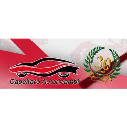 taglia 7 varietà di design prezzo speciale per Capellaro Autoricambi - Filtri - produzione e commercio ...