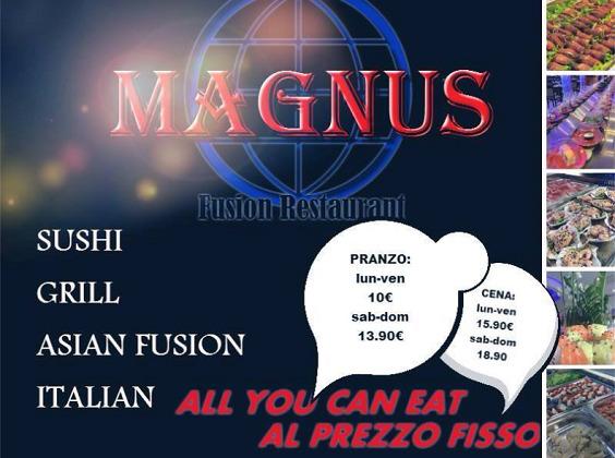 Wok Sushi Magnus