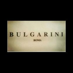 best service 23130 bbd1f Bulgarini Abbigliamento e Pellicceria - Pellicce e pelli ...