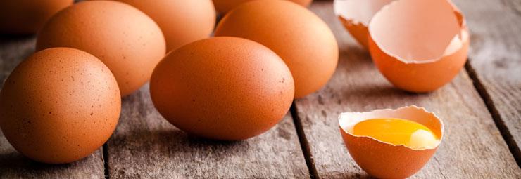 leggere etichetta uova