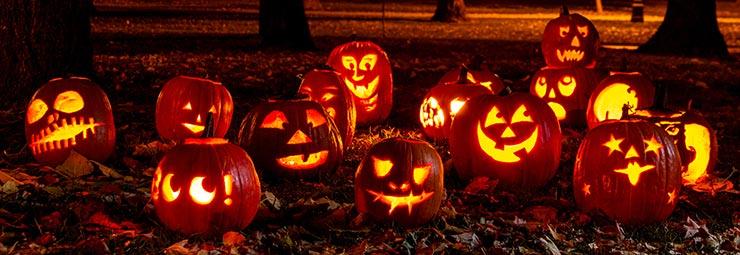 Zucca Di Halloween Quando Seminare.Metodi Fai Da Te Per Intagliare Una Zucca Di Halloween Perfetta