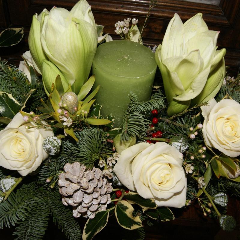 fiori romano bologna - photo#1