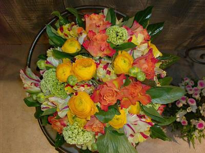 fiori romano bologna - photo#4
