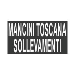 Mancini Toscana Sollevamenti - Gru - noleggio San Miniato