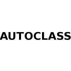 Autoclass - Automobili - commercio Briga Novarese