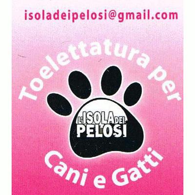 L'Isola dei Pelosi - Animali domestici - toeletta San Giuseppe