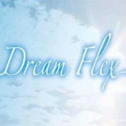 Dream Flex Srl - Materassi - vendita al dettaglio Lentiai