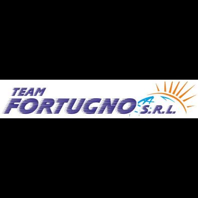 Team Fortugno S.r.l. - Autosoccorso Palmi