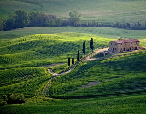 Tuscan Country Roads