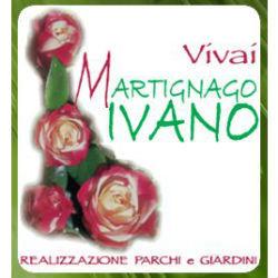 Vivai Martignago Ivano - Giardinaggio - servizio Trevignano