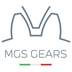 Mgs Gears - Riduttori e regolatori pressione Rho