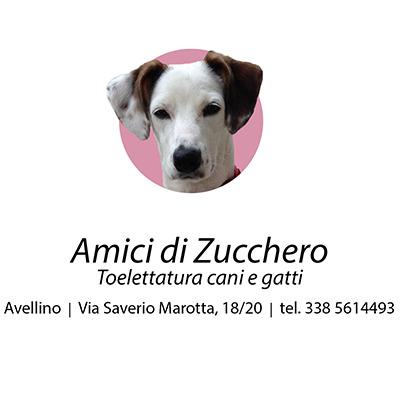 Amici di Zucchero - Animali domestici, articoli ed alimenti - vendita al dettaglio Avellino