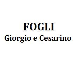 Fogli Giorgio e Cesarino - Elettrodomestici - riparazione e vendita al dettaglio di accessori Comacchio