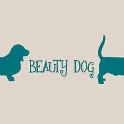 Beauty Dog - Animali domestici - toeletta Scandicci