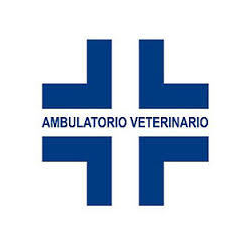 Ambulatorio Veterinario Lostia Dr. Michele - Veterinaria - ambulatori e laboratori Senorbi'