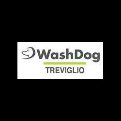 Wash Dog Treviglio - Animali domestici - toeletta Treviglio