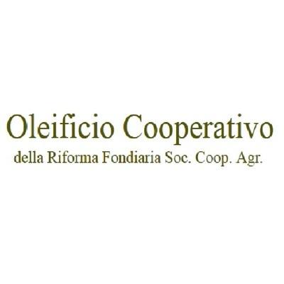 Oleificio Cooperativo della Riforma Fondiaria di Leverano - Oli alimentari e frantoi oleari Leverano