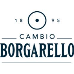 Cambio Borgarello - Numismatica Torino