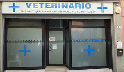 Ambulatorio Veterinario Suisio