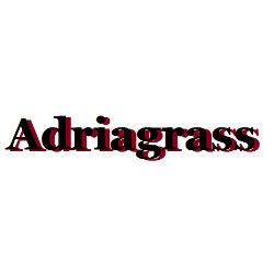 Adriagrass - Rifiuti di macellazione - raccolta e trattamento Silvi