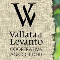 Cooperativa Agricoltori della Vallata di Levanto - Enoteche e vendita vini Levanto