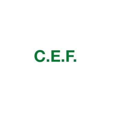 C.E.F. - Resine espanse Almenno San Salvatore