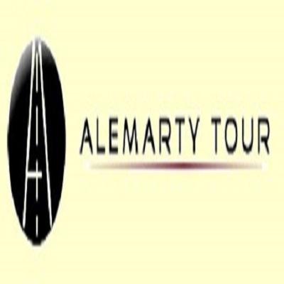 Servizio Taxi e Autonoleggio Alemarty Tour - Taxi Pinerolo