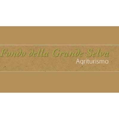 Fondo Grande della Selva - Agriturismo Torrile