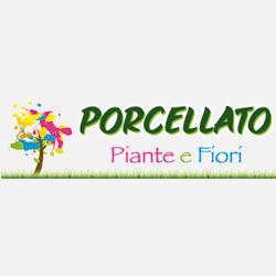 Porcellato Piante e Fiori di Porcellato Piergiorgio & C. - Fiori e piante - vendita al dettaglio Valla'
