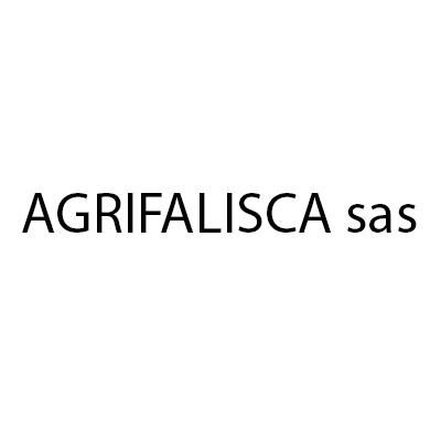 Agrifalisca Sas - Casalinghi Montefiascone