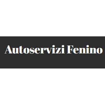 Autoservizi Fenino - Automobili - commercio Binasco