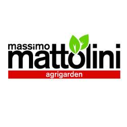 Mattolini Massimo