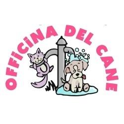 Officina Del Cane - Animali domestici - toeletta Arezzo