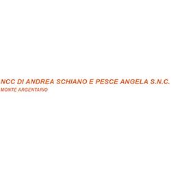 Ncc di Andrea Schiano e Pesce Angela - Autonoleggio Monte Argentario