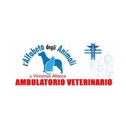 Alfabeto degli Animali - Animali domestici, articoli ed alimenti - vendita al dettaglio Somma Vesuviana