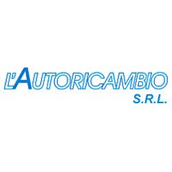 L'Autoricambio - Autoaccessori - commercio Savona