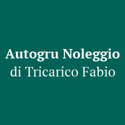 Autogru Noleggio Tricarico Fabio - Gru - noleggio Tribiano