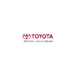 Mariani Auto - Toyota - Automobili - commercio Cesano Maderno