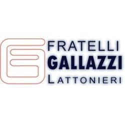 Fratelli Gallazzi Lattonieri - Lattonieri Busto Arsizio