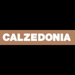 Calzedonia - Calze e collants - vendita al dettaglio Alba