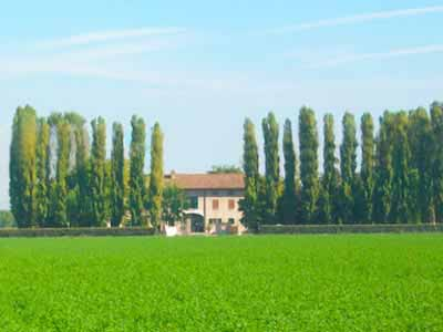 Agriturismo Il Colombo