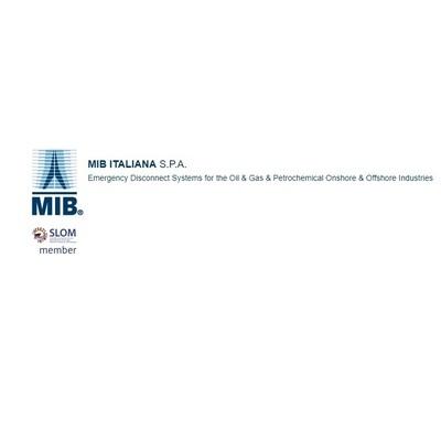 Mib Italiana S.p.a. - Valvole industriali Casalserugo