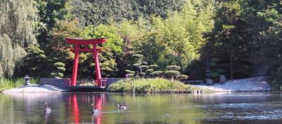 laghi artificiali FASTPOND
