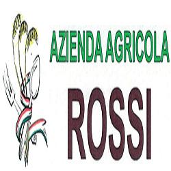 Rossi Societa' Agricola Semplice - Aziende agricole Bellinzago Novarese